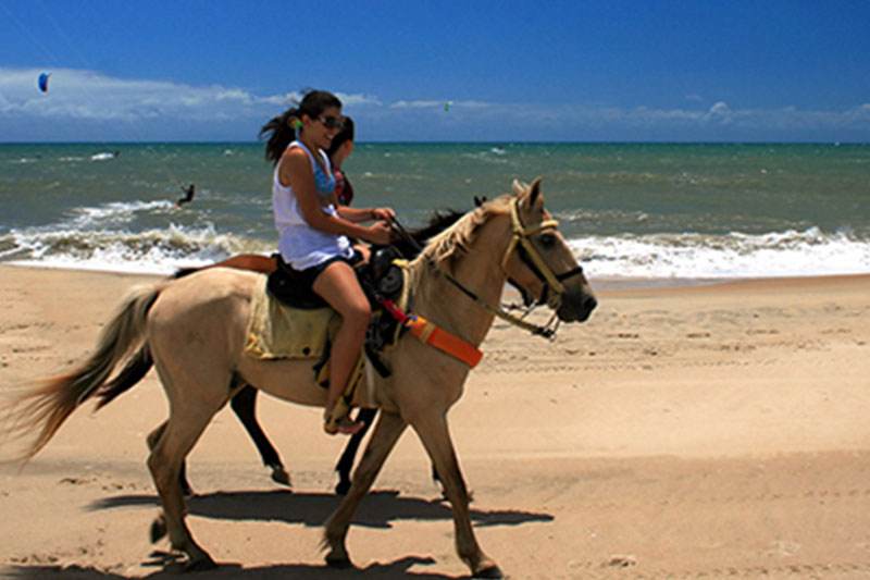 Horseback Riding Activities Cumbuco